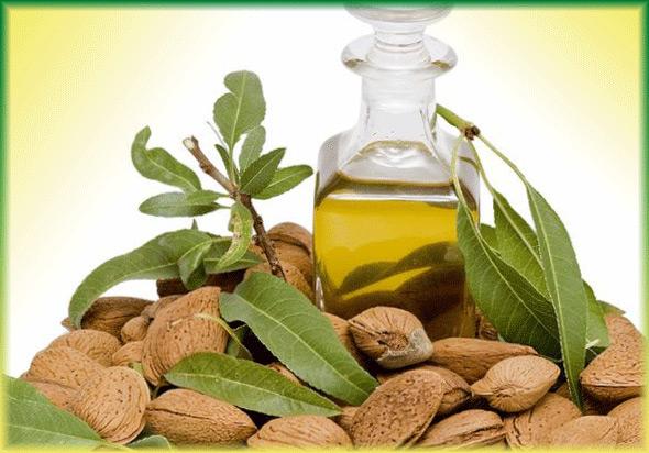 Масло миндальное: свойства и применение, чем полезно эфирное миндальное масло в косметологии, польза и состав для похудения